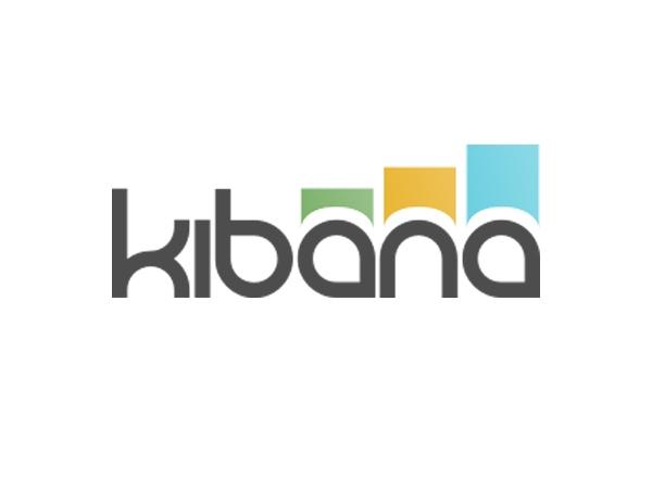 Kibana installation